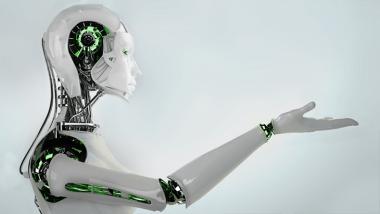 robotik-article-lynx