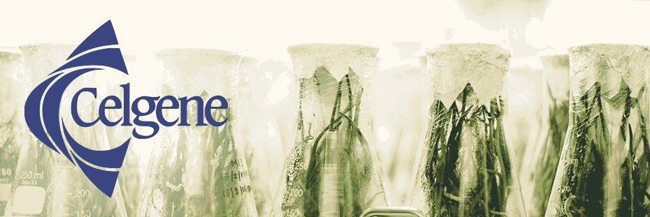 Die besten BioTech Aktien: Celgene | LYNX Broker